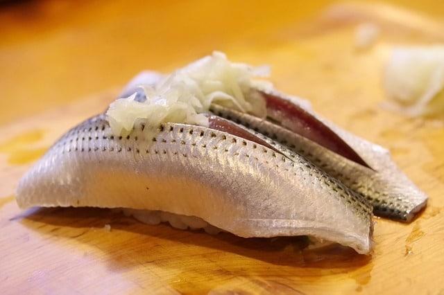 shad-catfish-bait