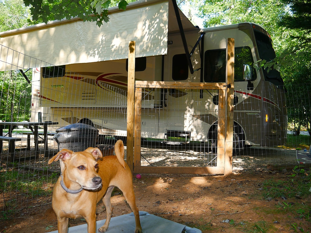 Four Paws Kingdom Campground
